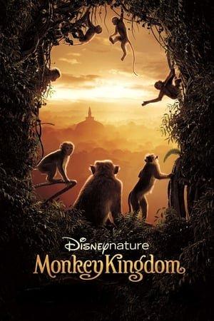მაიმუნების სამეფო (ქართულად) / Monkey Kingdom / maimunebis samefo